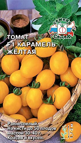 (Russian Tomato Yellow Caramel F1 (Early, indet, Plum-Shaped, Yellow, 30-40g,up to 50 FR. on Brush). MF 0.1)