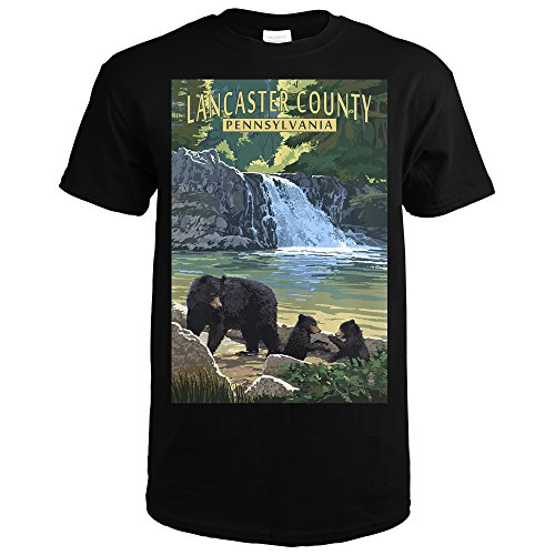 Lancaster County, Pennsylvania - Black Bears and Waterfall (Black T-Shirt Large) (Wall Lancaster Lantern Black)