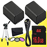 TWO BP-819 Lithium Ion Replacement Battery + 16GB SDHC Class 10 Memory Card + 43mm 3 Piece Filter Kit + Mini HDMI Cable + Full Size Tripod for Canon Vixia HFM40 HFM41 HFM400 HV30 Digital Camcorders DavisMAX BP819 Accessory Bundle