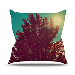 "Kess InHouse Robin Dickinson ""Change is Beautiful"" Teal Red Outdoor Throw Pillow, 20 by 20-Inch"