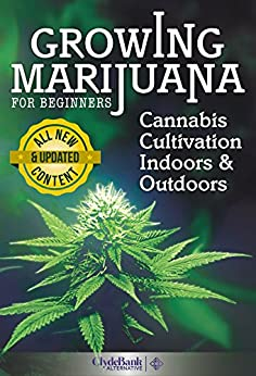 how to grow weed outdoors for beginners
