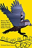 img - for Edgar Allan Cozy: Wicked Short Stories book / textbook / text book