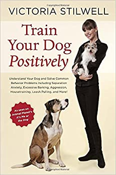 Best Way To Train A Dog With Separation Anxiety