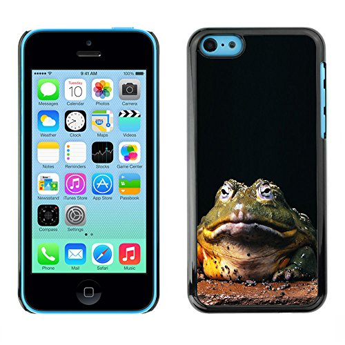 Omega Case PC Polycarbonate Cas Coque Drapeau - Apple iPhone 5C ( Funny Hypno Toad Big Frog )