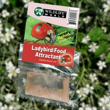 Ladybird Food & Attractant - Single arar