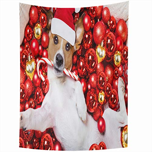 - Ahawoso Tapestry 60 x 80 Inches Bauble Red Treat Jack Russell Terrier Dog Selfie Santa Claus Christmas Holidays Advent Ball Wall Hanging Home Decor Tapestries for Living Room Bedroom Dorm