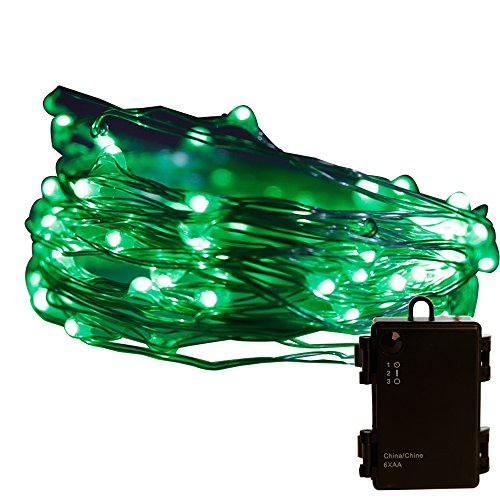 Pansdore Christmas Lights 60 LED String Lights for Indoor Outdoor Party, Timer Function, Copper Wire, Green