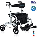 Health Line 2 in 1 Rollator-Transport Chair w/Paded Seatrest, Reversible Backrest and Detachable