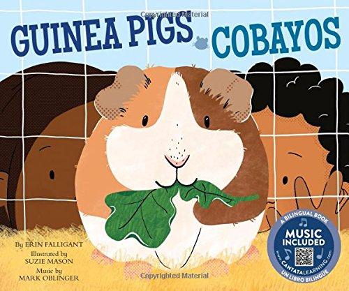 Guinea Pigs / Cobayos (Pets!/ Las Mascotas!)