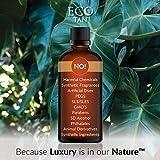 Eco Tan Face Tan Water