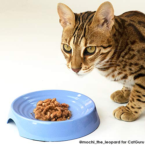 - CatGuru New Premium Whisker Stress Free Cat Food Bowl, Reliefs Whisker Fatigue, Wide Cat Dish, Non Slip Cat Feeding Bowl, Shallow Cat Bowl, Non Skid Pet Bowl for Cats, Round, Atlantis