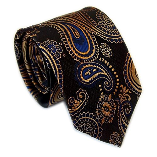 Secdtie Men's Classic Red Blue Striped Jacquard Woven Silk Tie Formal Necktie (One Size, Black paisley)