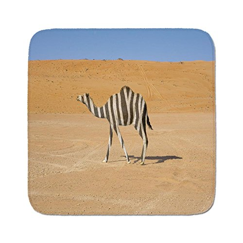 Camel Zebra (Cozy Seat Protector Pads Cushion Area Rug,Quirky Decor,Be Different Inspiration Lonely Camel on Desert with Zebra Skin Surreal Witty,Multicolor,Easy to Use on Any Surface)