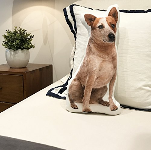 Cushion Co - Red Heeler Dog Shaped Pillow 16'' x 12'' by Cushion Co (Image #6)