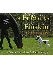 A Friend For Einstein: The Smallest Stallion