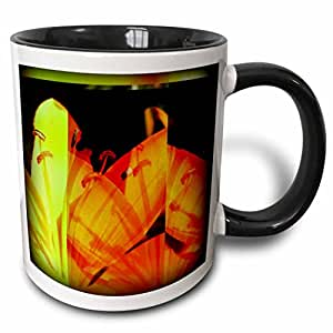 3dRose Patricia Sanders Flowers - Lily Flower Abstract- Spring Floral - 11oz Two-Tone Black Mug (mug_47810_4)