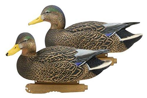 Greenhead Gear Decoy (Greenhead Gear Pro-Grade Duck Decoy,Hybrid Black Ducks/Active)