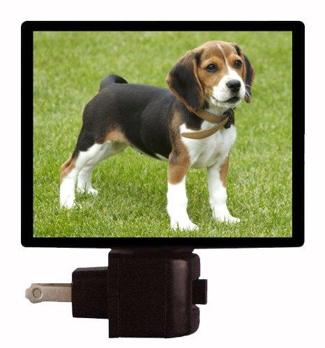 Dog Night Light - Beagle Puppy