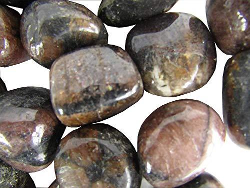 CircuitOffice 10 Piece Chiastolite Tumbled Stones (0.75