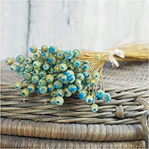 Nyalex 50pcs/lot Home Decor Dried Flower Bouquet Natural Dried Flowers Wedding Party Decorative Photography Props 116