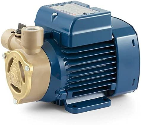 Electric Water Pump with peripheral impeller PQAm72 0,75Hp 240V Pedrollo