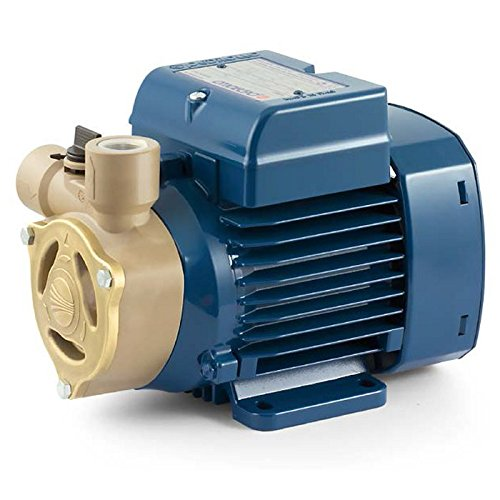 Electric Water Pump with peripheral impeller PQAm 60 0,5Hp 240V Pedrollo