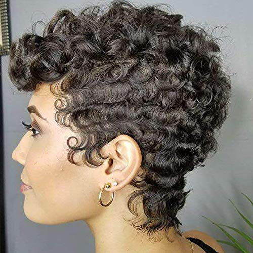 Naseily Afro Curly Synthetic Wigs For Black