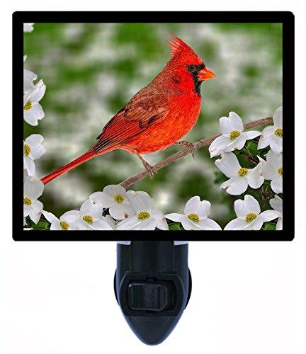 - Night Light - Male Northern Cardinal - Red Bird - Flowers