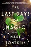 img - for The Last Days of Magic: A Novel book / textbook / text book