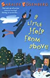 A Little Help from Above, Saralee Rosenberg, 0060096209