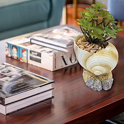 Mortilo Personalized Conch/Retro Radio Camera Resin Flowerpots Planter, Mini Creative Flower Pot Garden Home Crafts Ornaments, Outdoor Indoor Spaces Great Gift for Home Garden Decor (A)
