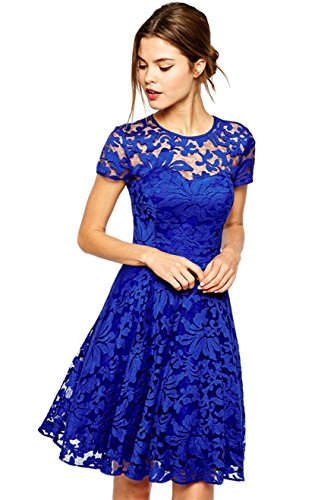Amoluv Women Round Neck Short Sleeve Pleated Lace Slim Dress Blue Small