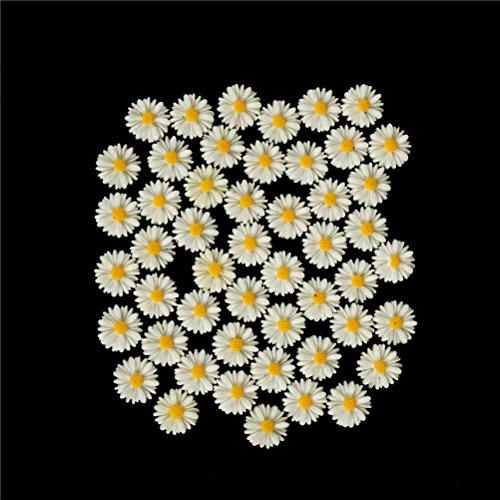 Xiangfeng 50 PCS Mini Resin Flatback Daisy Flower Charms Jewellery Making Beads Findings Scrapbooking Embellishments Flatback -