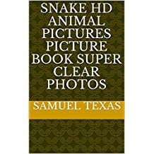 Snake Hd Animal Pictures Picture book Super Clear Photos