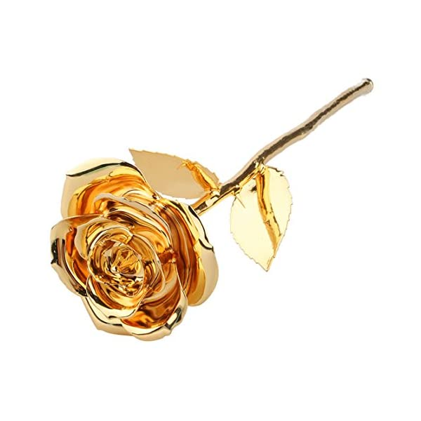ZJchao Gift Ideas for Her, Love Forever Long Stem Dipped 24k Gold Foil Trim Rose, Best Gifts for Christmas, Valentine's Day, Anniversary, Mom Birthday Gift (Gold)