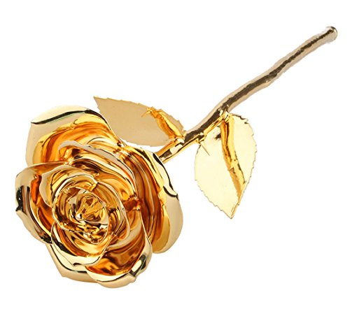 ZJchao Gold 24K Rose, ZJchaoMothers Day Long Stem Dipped 24k Gold Rose in Gift Box Best Valentines