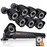 Anlapus 960H 8CH 1TB Security System (8) 900TVL IP66 Bullet Cameras (Black)