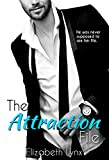 The Attraction File (Cake Love Book 2)