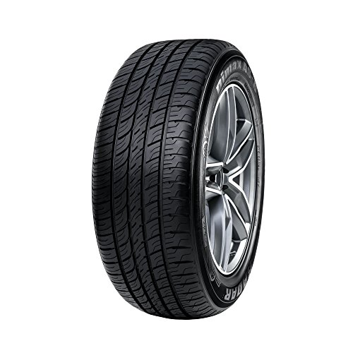 Radar Tires Dimax AS-8 Touring Radial Tire - 205/60R16 92V by Radar Tires (Image #2)
