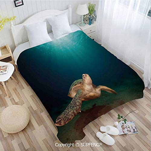 - FashSam Plush Blanket Green Turtle Swimming Underwater Sunbeams Aquatic Wildlife Picture(W39.4xL49.2 inch) Air Conditioning Comfort Warmth for Bedroom/Living Room/Camping etc