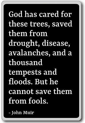 God has cared for these trees, saved them from dr... - John Muir - quotes fridge magnet, Black