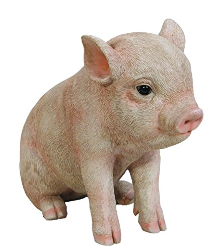 Hi-Line Gift Ltd Sitting Baby Pig, 6