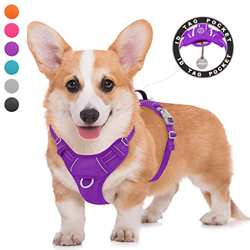 BARKBAY No Pull Dog Harness Large Step in Reflective Dog Harness with Front Clip and Easy Control Handle for Walking Training Running with ID tag Pocket from BARKBAY