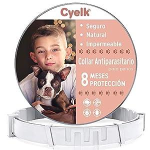 Cyelk Collar Antiparasitos Perro, contra Garrapatas y Pulgas, Collar Antipulgas Perro Natural Hipoalergénicos para…