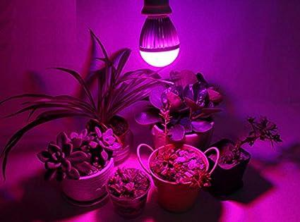 Oisk orticoltura e w fabbrica led levano lampadina per