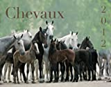 CALENDRIER CHEVAUX 2012