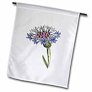 Florene Vintage - Picture of 1859 Drawing Of A Thistle Plant - 18 x 27 inch Garden Flag (fl_80726_2)