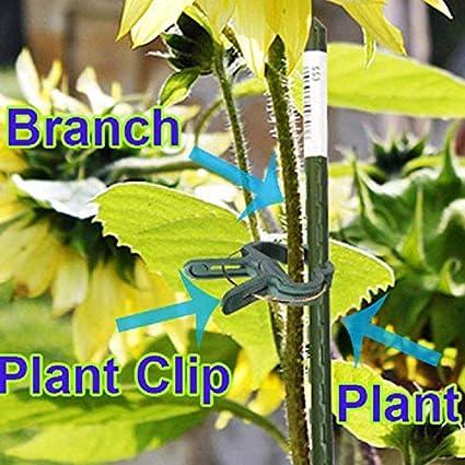 RETYLY 40 Piezas Planta De Jardineria Verde Suave & Pinzas De ...