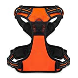 Best Pet Supplies No Pull Front Range Adjustable Harness with 3M Reflective Technology, Small, Orange