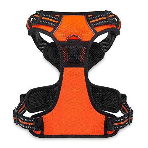 Best Pet Supplies No Pull Front Range Adjustable Harness with 3M Reflective Technology, Small, Orange by Best Pet Supplies, Inc.